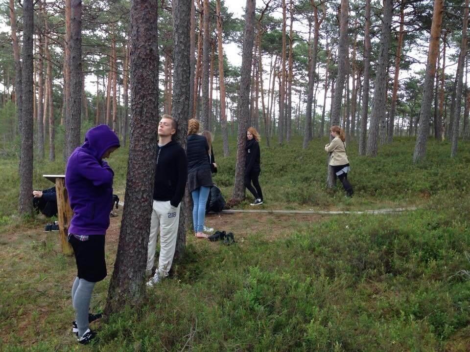 Vølven i Estland og Letland 2015